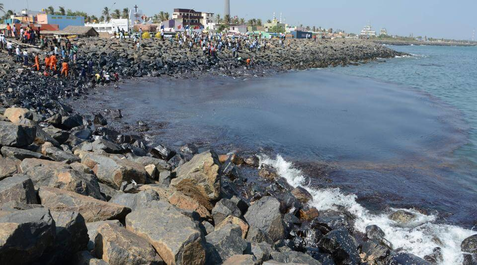Oil Spill In Chennai-Authorities To Grapple With The Cleanup Process As Ecological Disaster Looms