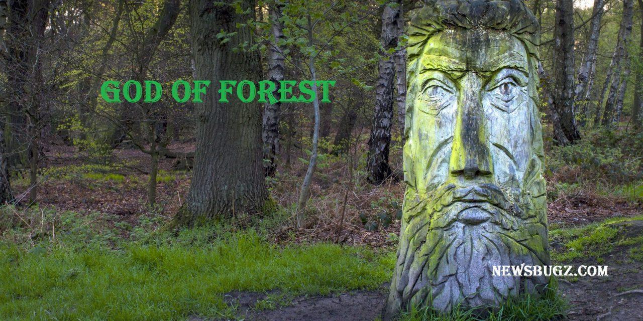 God of Forest | In Roman Mythology