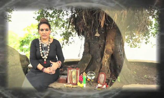 Sshivani Durga Biography, Wiki, Bigg Boss, Age, Career