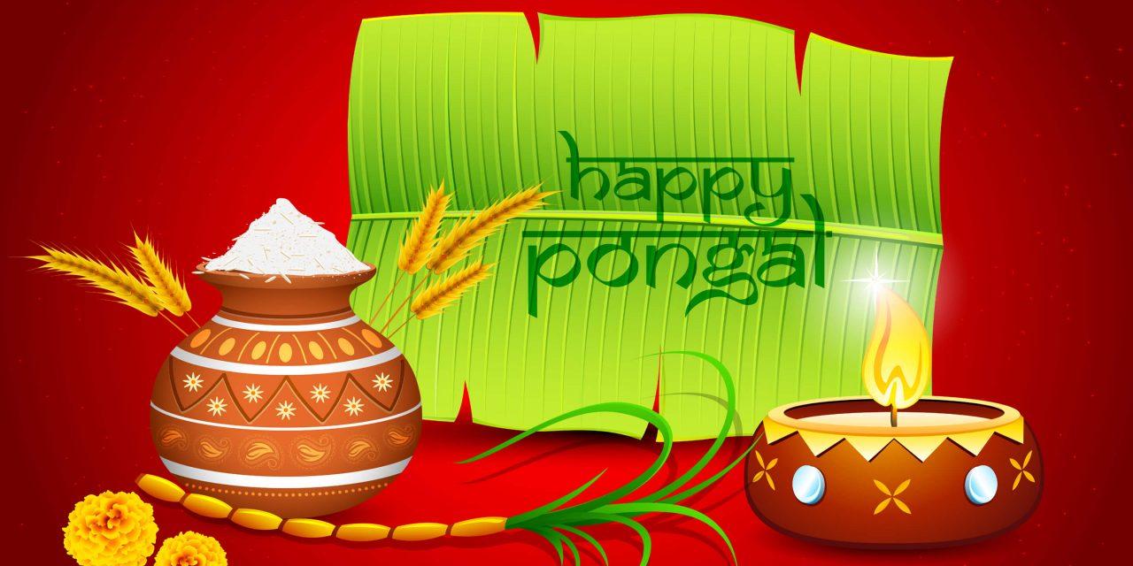 Happy Pongal Festival 2018 Wishes   Bhogi, Maattu Pongal, Jallikattu, Kaanum Pongal and More