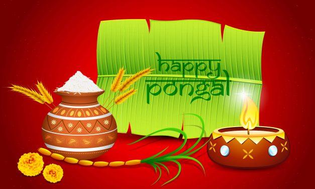 Happy Pongal Festival 2018 Wishes | Bhogi, Maattu Pongal, Jallikattu, Kaanum Pongal and More