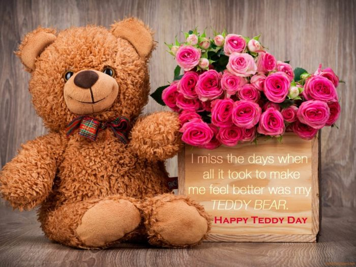 Happy teddy day 2018 valentines week greetings love quotes happy teddy day 2018 m4hsunfo