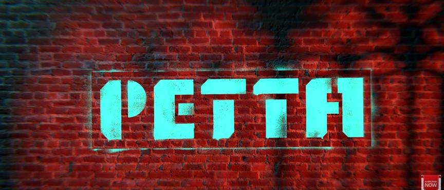 Petta Tamil Movie News Bugz