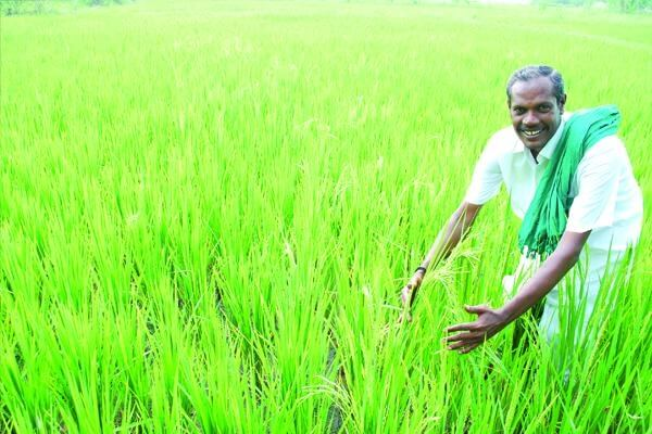 'Nel' Jayaraman passed Away at 54