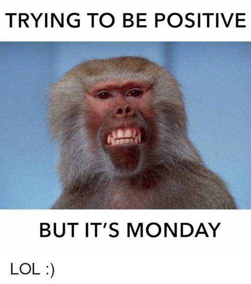 monday memes funny meme happy way clean its positive start sayingimages trying quotes right hilarious tweet