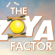 The Zoya Factor Hindi Movie
