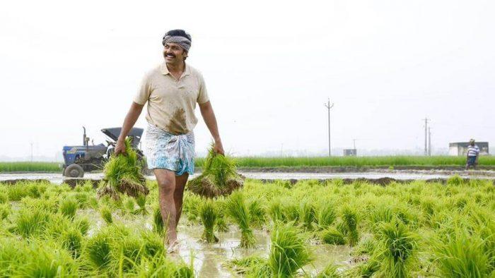 Karthi Hit Movies
