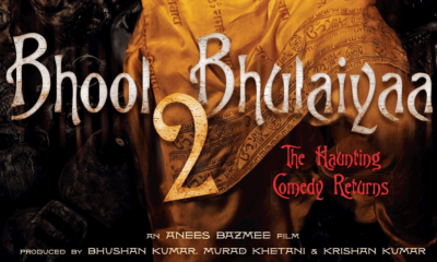 Bhool Bhulaiyaa 2 Hindi Movie