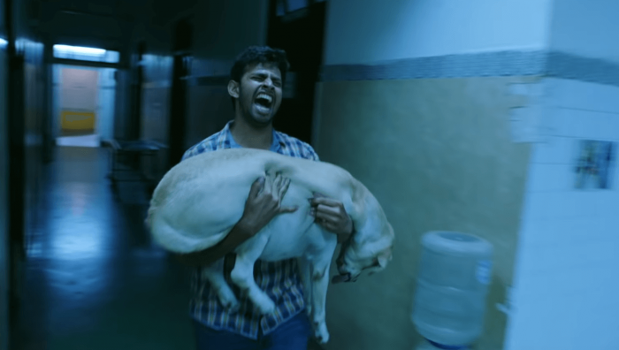 Puppy Movie Download