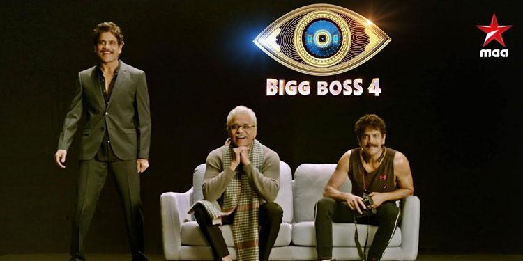 Bigg Boss telugu 4 Vote