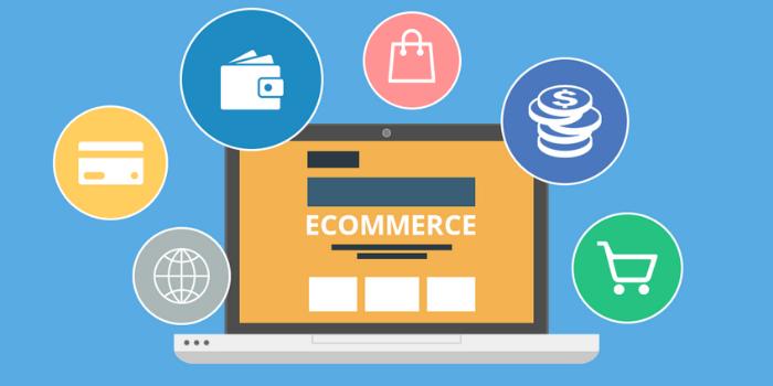 Costs for Development Custom E-commerce Website