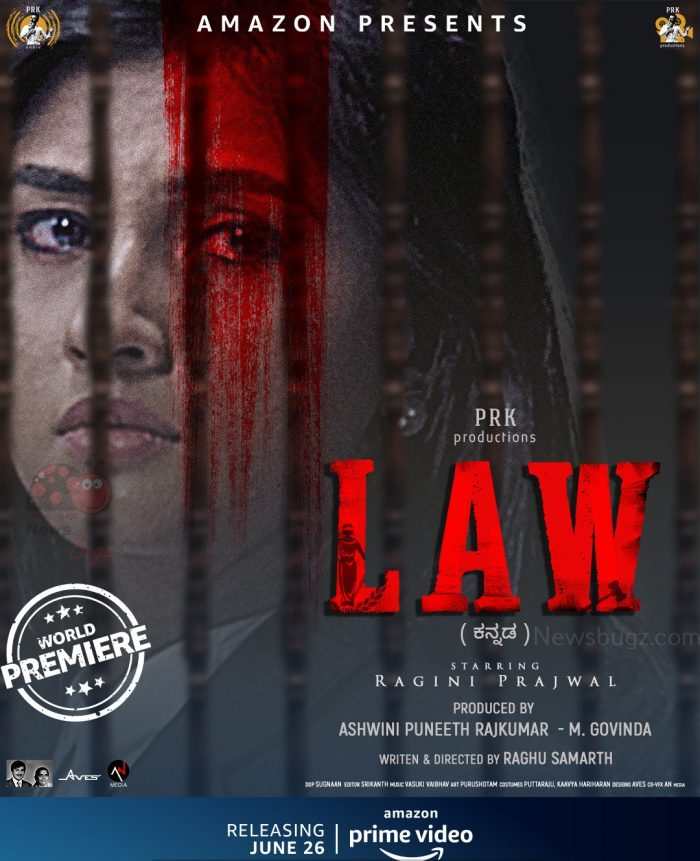 Law Movie Amazon Prime