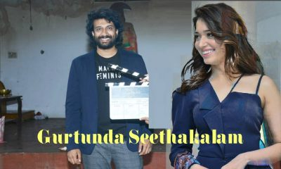 Gurtunda Seethakalam Movie