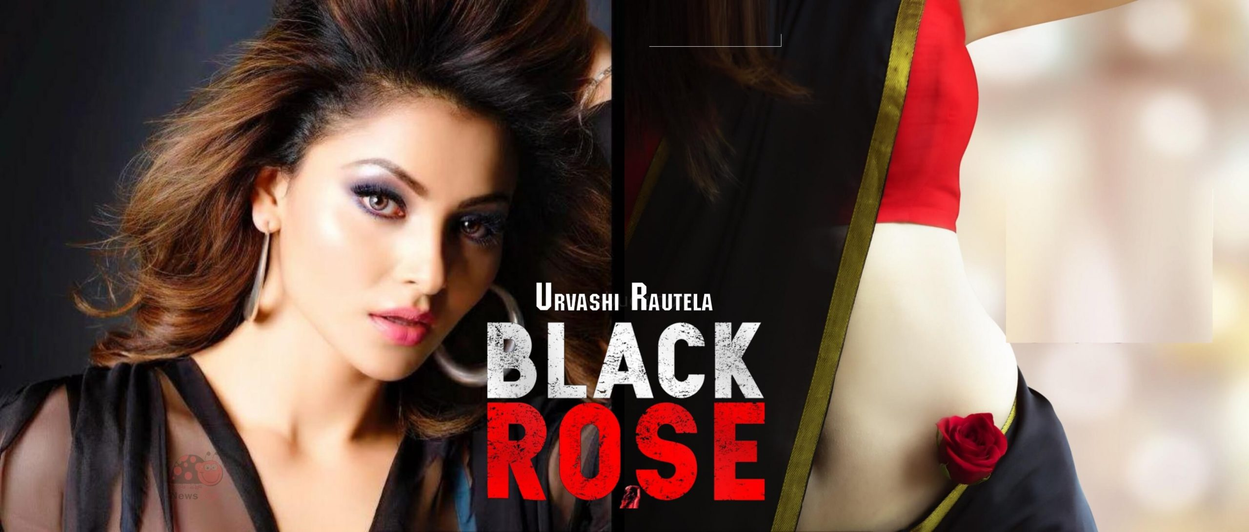 Black Rose Movie