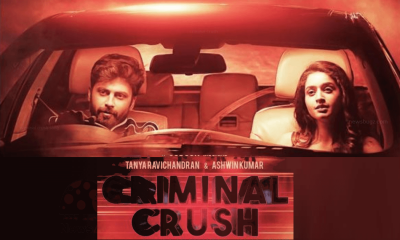 criminal crush song
