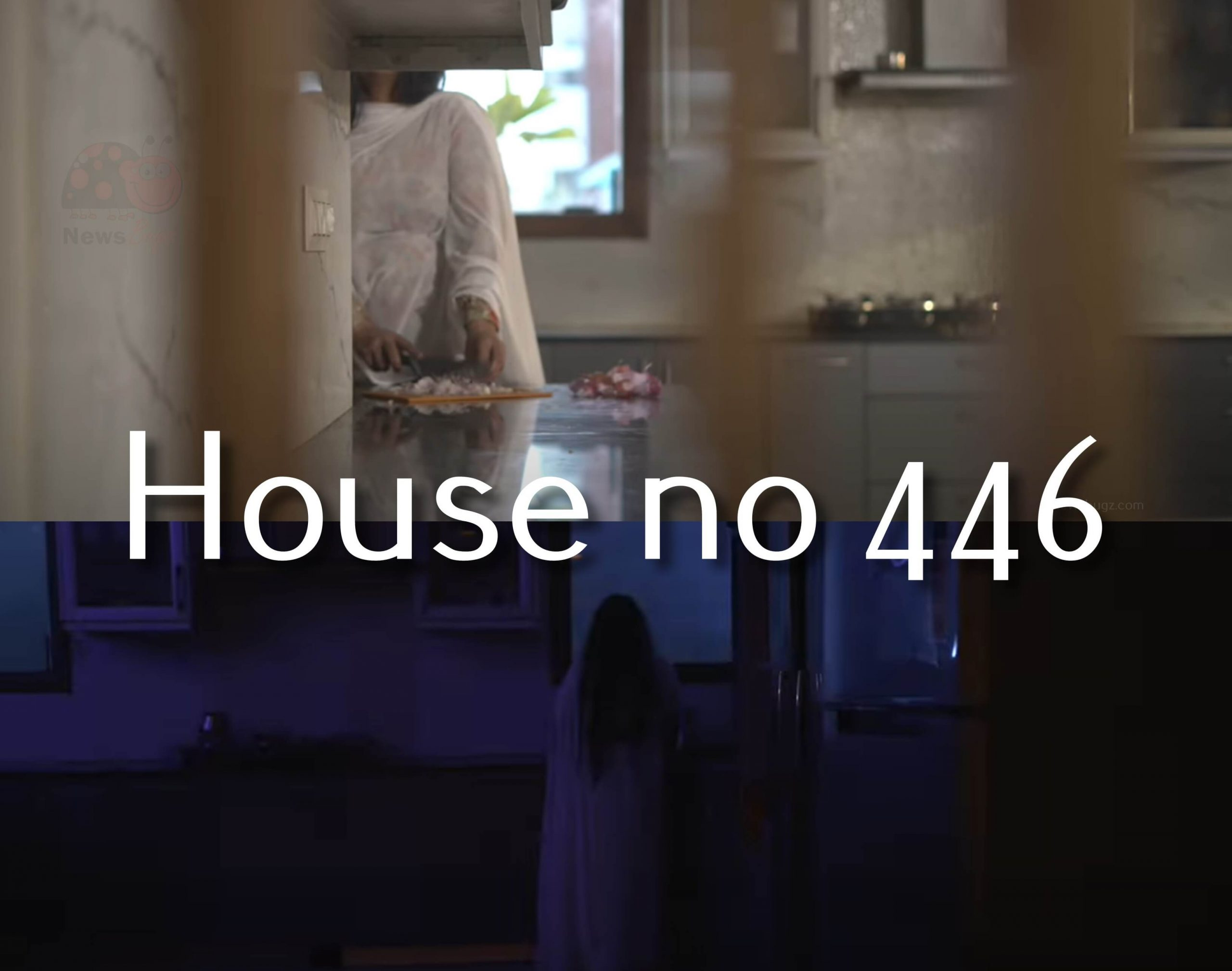 House no 446 Filmybox Full movie, release date, cast, trailer